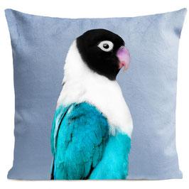 MISS BIRDY - LIGHT BLUE