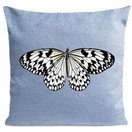 WHITE BUTTERFLY  - LIGHT BLUE