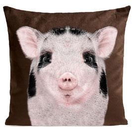 BABY PIG - BROWN