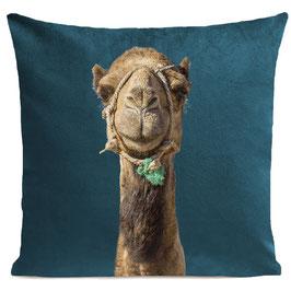 SMILING CAMEL - SCANDINAVIAN BLUE