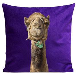 SMILING CAMEL - PURPLE