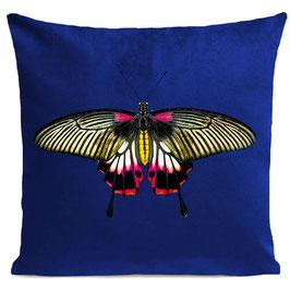 PINK BUTTERFLY - KLEIN BLUE