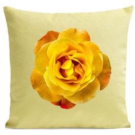 ORANGE ROSE - LIGHT YELLOW