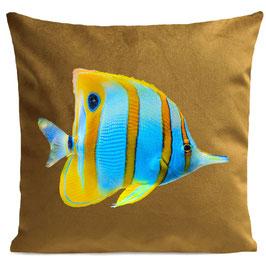 BUTTERFLY FISH - MUSTARD