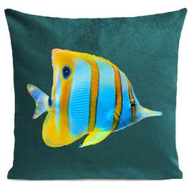 BUTTERFLY FISH - SCANDINAVIAN GREEN