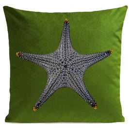 STAR FISH - PURE GREEN