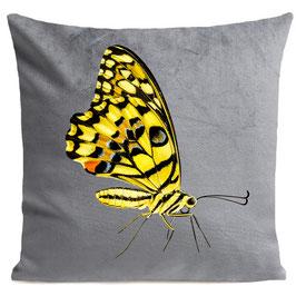 YELLOW BUTTERFLY - LIGHT GREY