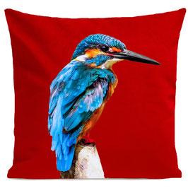 LITTLE BLUE BIRD - RED