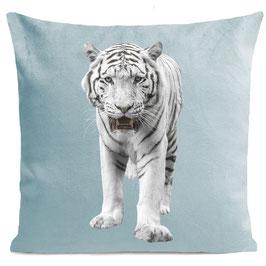 WHITE TIGER - MIAMI BLUE
