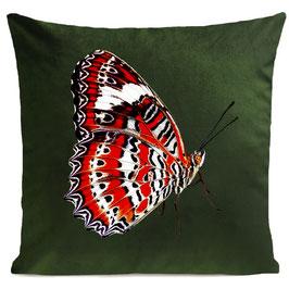 RED BUTTERFLY - BOTTLE GREEN