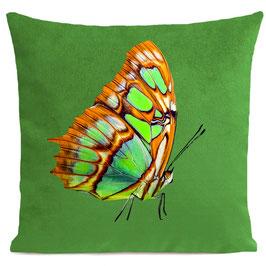 ORANGE BUTTERFLY - BRIGHT GREEN
