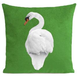 WHITE SWAN - BRIGHT GREEN