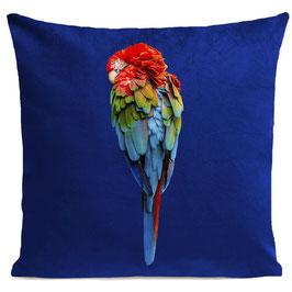 RED PARROT - KLEIN BLUE