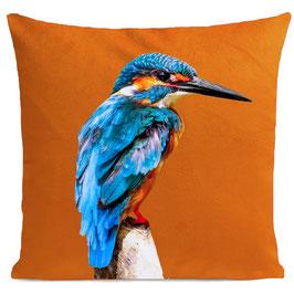 LITTLE BLUE BIRD - ORANGE