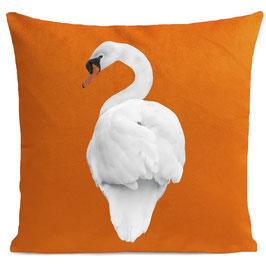 WHITE SWAN - BRIGHT ORANGE