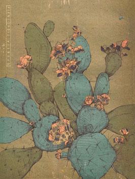Kaktus Illustration