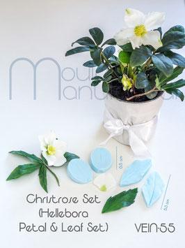 Christrose Set (Christmas Rose Petal & Leaf Set)
