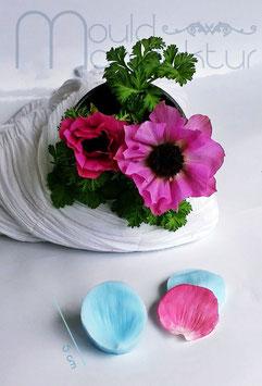 Anemone Blütenblatt (Anemone Petal)