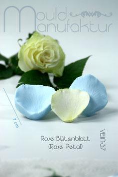 Rose petal M (Rose Petal M)