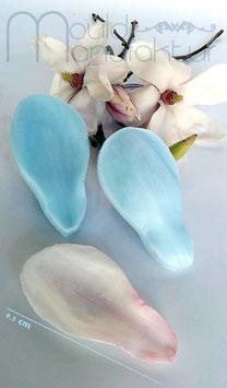 Magnolie Blütenblatt (Magnolia Petal)