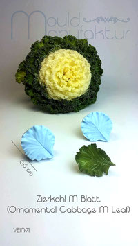 Zierkohl M (Ornamental Cabbage M)