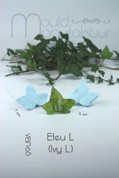 Efeu L (Ivy L)