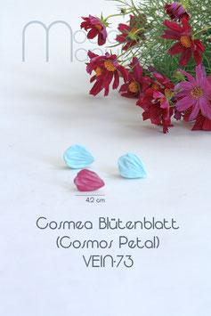Cosmea Blütenblatt