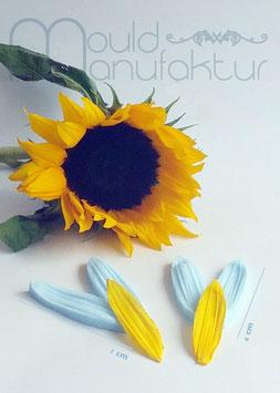 Sonnenblume Blütenblatt  (Sunflower Petal 2 sizes)