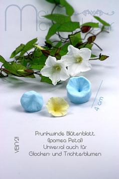 Prunkwinde Blütenblatt (Ipomea Petal)