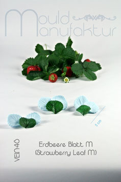 Erdbeere Blatt M   (Strawberry Leaf  M)