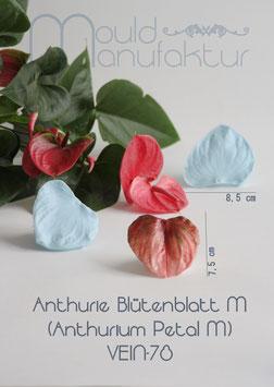 Anthurie Blütenblatt