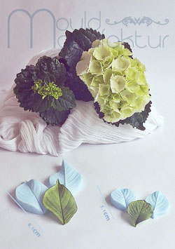 Hortensie Blatt S&M       (Hydrangea Leaf S&M)