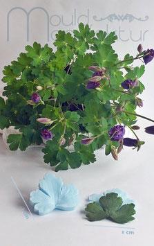 Akelei Blatt (Aquilegia Leaf)