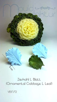 Zierkohl L (Ornamental Cabbage L)
