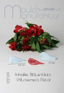 Altroemera Blütenblatt S & M  (Inkalile Petal ) 2 Größen
