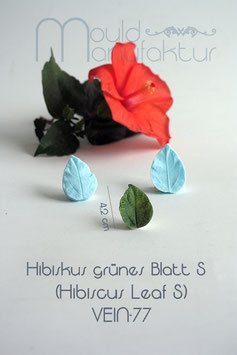 Hibiskus grünes Blatt S