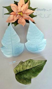 Weihnachtsstern Blatt XXL (Poinsettia Leaf)