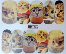 zuckersüße Katze  NR. A1276