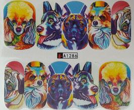 süßer Hund NR. A1286