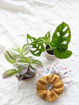 *Heavin x Mooii* Vintage & Plants Box   Jungle & Terrazzo Edition
