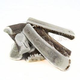 Trocken-Produkte vom Rothirsch (Geweihstücke)