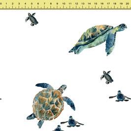"""Vorbestellung """"Sea Turtle"""" Eigenproduktion"""