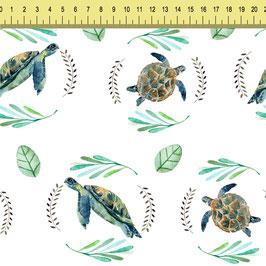 """Vorbestellung """"Green Turtle"""" Eigenproduktion"""
