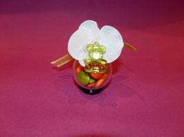 Fleur de Nounours