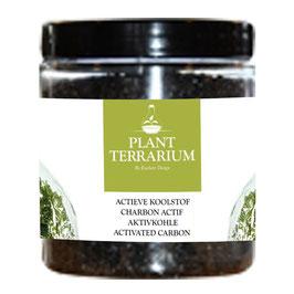 Plant terrarium actieve koolstof