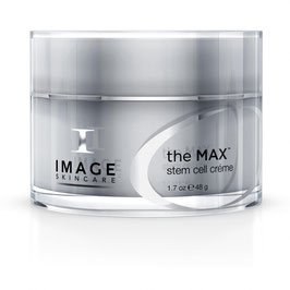 the MAX crème 48g