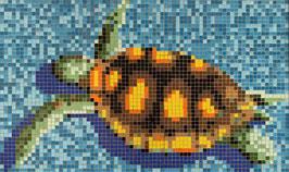 Mosaico TARTARUGA su fondo Mix Azzurro