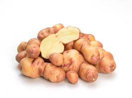 Uach - Andenkartoffel