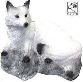 SRT weißer Fuchs liegend