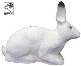 SRT Kaninchen weiß